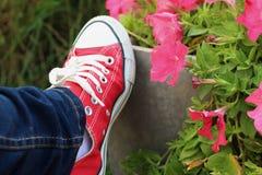 Scarpe rosse con un fondo dei fiori Immagine Stock Libera da Diritti
