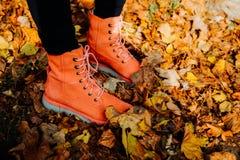 Scarpe rosse in foglie di autunno immagine stock libera da diritti