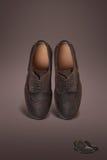 Scarpe scure della pelle scamosciata degli uomini Fotografia Stock Libera da Diritti