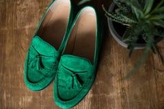 Scarpe verdi dei man's su un pavimento di legno vicino che sta un vaso con aloe sfuocato Immagine Stock Libera da Diritti