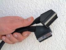 SCART Verbinder in der Hand Stockbild