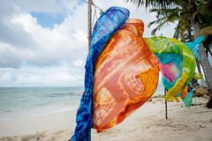 Scarves de sopro do vento do mar fotografia de stock royalty free