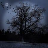 scary δέντρο διανυσματική απεικόνιση