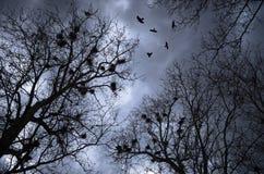 scary σκηνή Στοκ φωτογραφίες με δικαίωμα ελεύθερης χρήσης
