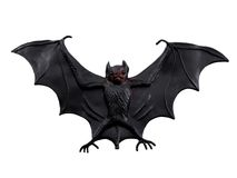 Scary Bat Royalty Free Stock Photos