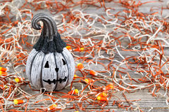 Scary black and white Halloween pumpkin Stock Image