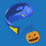 Scary Blue tang Stock Image