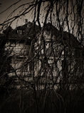 Scary branches dry tree, and haunted house. Long branches of a dry tree on the background of the house with ghosts photos in a mystical way Royalty Free Stock Photo