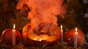 Scary carved pumpkin on Halloween in hot fire and smoke stock footage