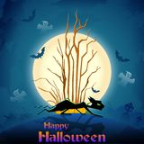 Scary cat in Halloween night Royalty Free Stock Photo