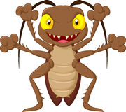 Scary cockroach cartoon Royalty Free Stock Photo