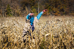 Scary corn maze and alien Royalty Free Stock Photo