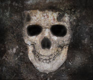 Scary Dark Skull Bones Face. A skull of a human with decay texture for a background. The dark skull can be used for Halloween, death or a nightmare concept Stock Photo