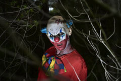 Scary evil clown in the woods Stock Photos