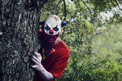 Scary evil clown in the woods. Closeup of a scary evil clown in the woods, emerging from behind of a big tree stock photo
