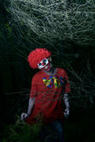 Scary evil clown in the woods Royalty Free Stock Photo