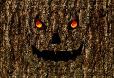 Scary face burning eyes, halloween background lantern jack on bark Stock Image