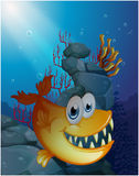 A scary fish under the sea near the rocks Stock Photography