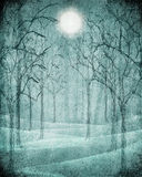 Scary forest illustration Stock Photography