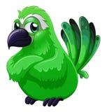 A scary green bird Stock Photos