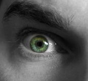 Scary green eye. Scary look of man face Royalty Free Stock Photos