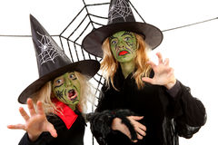 Scary green witches for Halloween stock photography