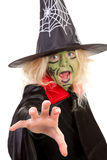 Scary green witches for Halloween royalty free stock image