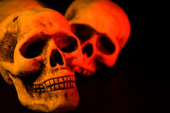 Scary Halloween. Skull series of pictures for Halloween season royalty free stock photography
