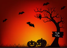 Scary Halloween With Bat, Tree and Pumpkin Stock Photo