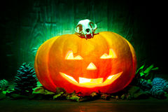 Scary Halloween pumpkin on a green wooden background Royalty Free Stock Images