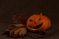 Scary halloween pumpkin jack-o-lantern Stock Photo