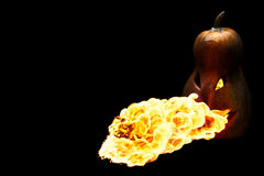 Scary Halloween pumpkin is spewing fire flame isolated on black Stock Photos