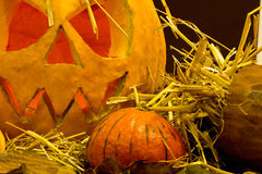 Scary  halloween pumpkins,close up Royalty Free Stock Photo