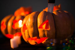 Scary Halloween pumpkins with faces Royalty Free Stock Images