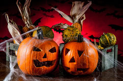 Scary halloween pumpkins, halloween theme Royalty Free Stock Photo