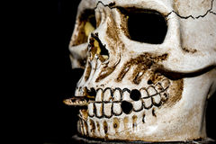 Scary Halloween Skull Royalty Free Stock Photography