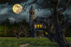 Scary house on moonlight. Will put some fun in yours creations vector illustration