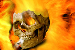 Scary Human Skull Royalty Free Stock Photos