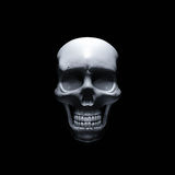 Scary human skull on black background Royalty Free Stock Photo