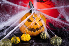 Scary Jack, halloween pumpkin and spider Royalty Free Stock Images
