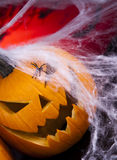 Scary Jack, halloween pumpkin and spider Stock Photo