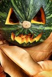 Scary Jack O Lantern halloween pumpkin. On dry leaves Stock Images