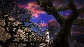 Scary looking tree branches with purple sky added and church in background stock video