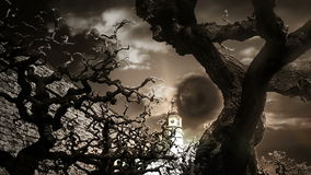 Scary looking tree branches and sky with moon. Shot of scary looking tree branches and sky with moon stock footage