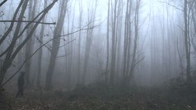 A scary man walking in a foggy forest SF