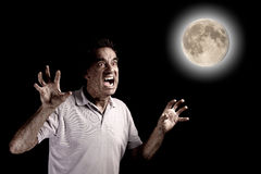 Scary Man Werewolf Fango Beast under Full Moon at. Halloween on Black Backgroud Stock Photos