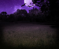 Scary Meadow at Night Halloween Violet Background Royalty Free Stock Photography