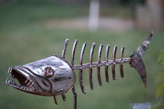 Scary Metal dead fish. This is a scary looking dead fish we have in our garden Royalty Free Stock Images