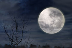 Scary Night With Full Moon Stock Images