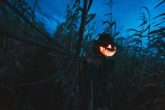 Free Scary Pumpkin Scarecrow In A Hat Stock Photos - 123301783
